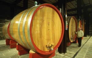 The large oak casks at Soldera.