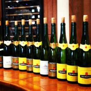 Trimach wine line-up
