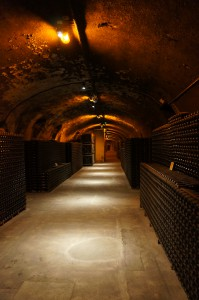 One hallway (of many) in the cellar at Krug.