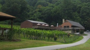From Naked Mountain Winery.