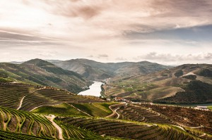 The Douro Valley (Wikimedia)