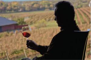 Barboursville Vineyards founder, Gianni Zonin, overlooking his Virginia vineyards