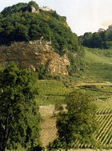 Vineyards in the Jura region of France. (Wikimedia)