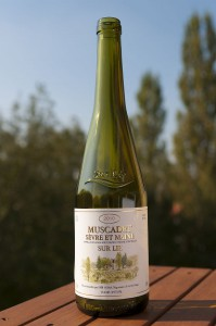 A bottle of Muscadet. (Wikimedia)