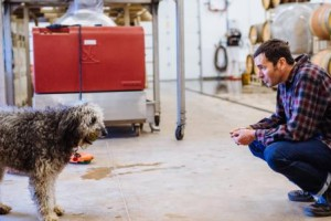 Josh and the Winery Dog (credit: Josh Chang)