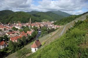Clos Saint Urbain, Range de Thann (Source: Domaine Zind-Humbrecht)