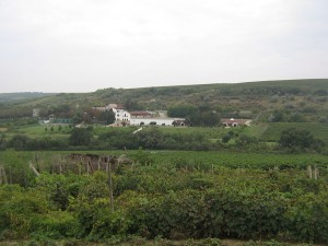 The Purcari winery surrounded by its vineyards. (Wikimedia)
