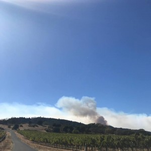 Day 7: skies remain clear, winds are in our favor, and the firefighters are getting control of this thing. (Posted by Matthiasson Wines on Facebook)