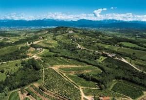 Friuli landscape. (Source: Friuli Italian Wines)