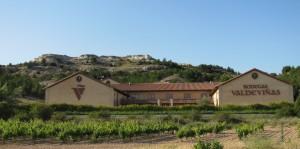 Bodega Valdeviñas in Ribera del Duero. (Wikimedia)