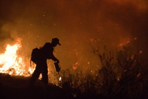 FEMA_-_33311_-_Fire_crew_member_fighting_Poomacha_wildfire_in_California