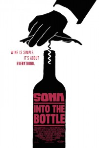 Somm - Into the Bottle